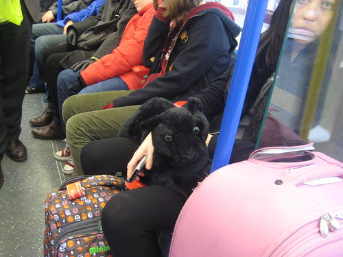 Panther on the Tube by Annie Mole