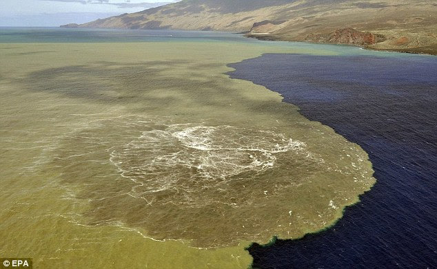 Sea of magma: Brown and bubbling volcanic material stains the sea off the coast of El Hierro in the Canary Islands from a new underwater volcano
