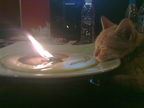 look at my little kitten sleep in front of the candle. How cool is she???