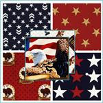 American Valor Fabric Collections - Discount Designer Fabric - Fabric.
