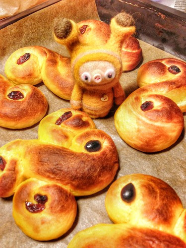 lucia bun and lussekatter