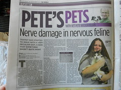 Thatsit was featured in the weekend Herald (p. 24, Pete's Pets, Saturday 30/11/2013)