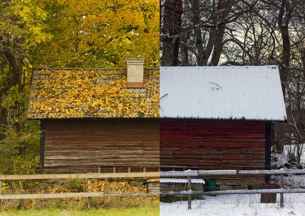 Autumn Vs. Winter