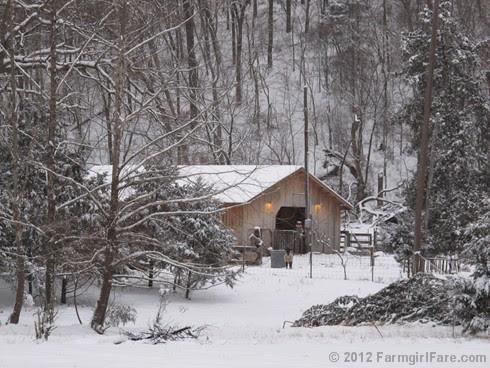 Snowy day at the sheep barn 1 - FarmgirlFare.com
