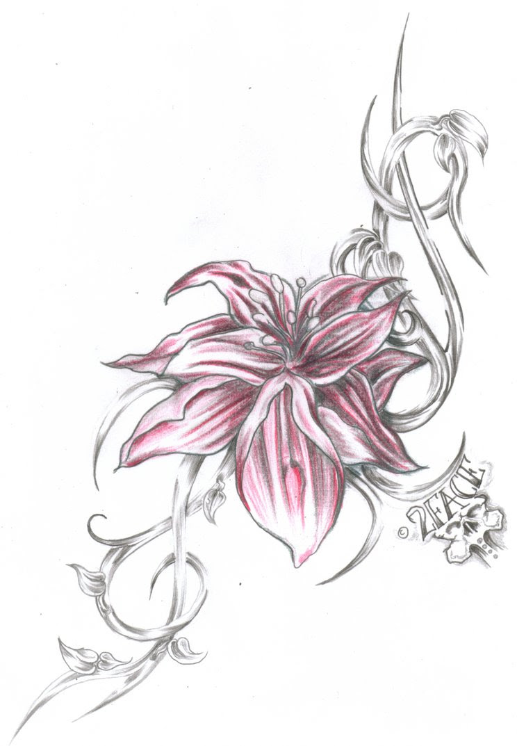 Elegant Jasmine Flower Tattoo Images Top Collection Of Different Types Of Flowers In The Images Hd
