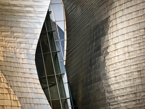 Detalle del Guggenheim - 2 - 338/365