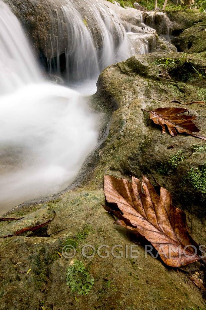 Samal - Hagimit Leafy Cascade
