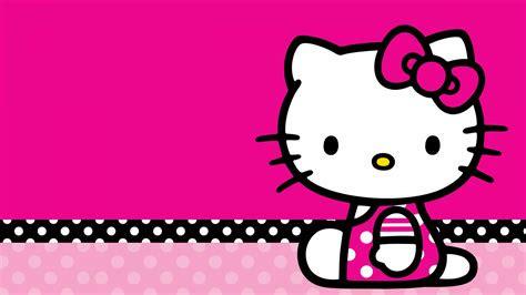 kitty wallpaper  hd resolution hd