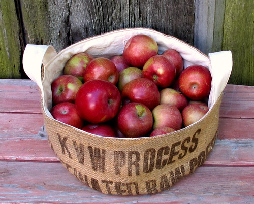 extra large and low bucket of apples