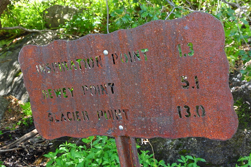 IMG_2923 Pohono Trail