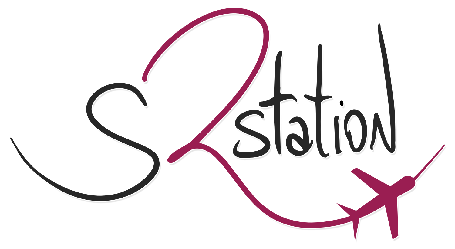 Logo do S2Station