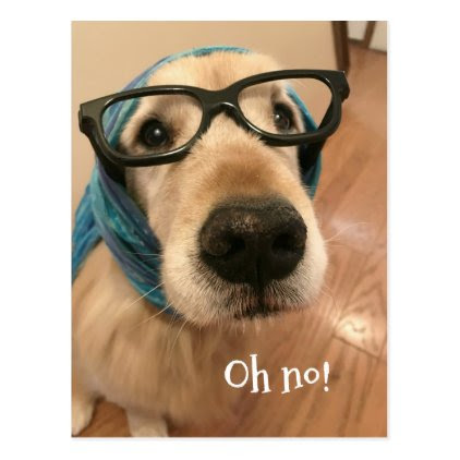 Golden Retriever Dog With Glasses Belated Birthday Postcard