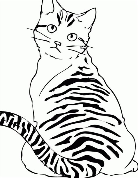 tabby cat coloring pages  getcoloringscom