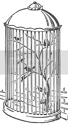 Scan_Pic0100.jpg birdcage_clipart picture by sarahjmorriss