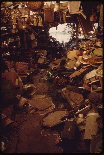 File:THE OWNER OF THIS HUGE JUNK SHOP ON THE KANSAS RIVER IN BONNER SPRINGS DIED IN 1971. NOW THERE IS ONLY THE RIVER AND... - NARA - 552093.jpg