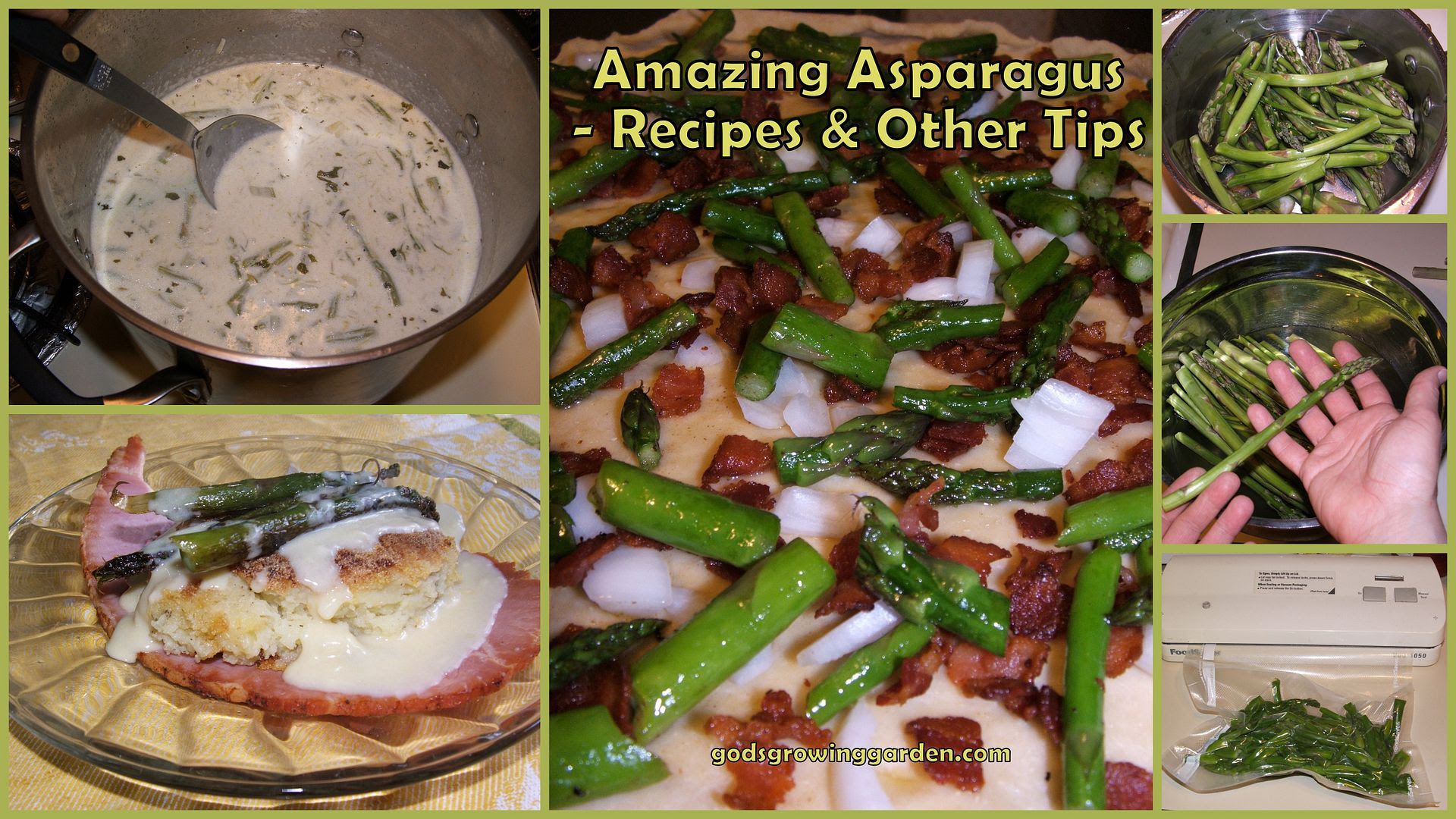 Amazing Asparagus by Angie Ouellette-Tower for godsgrowinggarden.com photo 2013-05-19_zps66a6cbd4.jpg