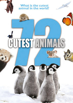 72 Cutest Animals - Season 1