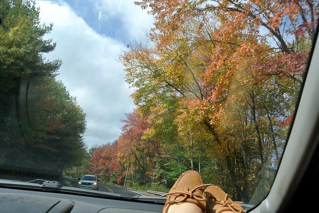 Road Trip • Part 1!