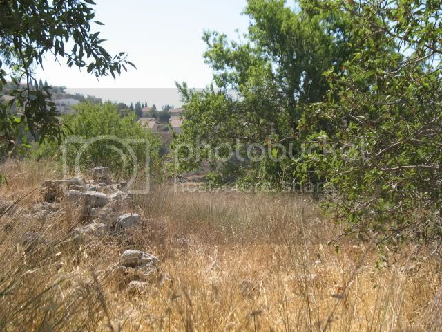 Tel Shiloh, Rosh Chodesh Tammuz, June, 2009