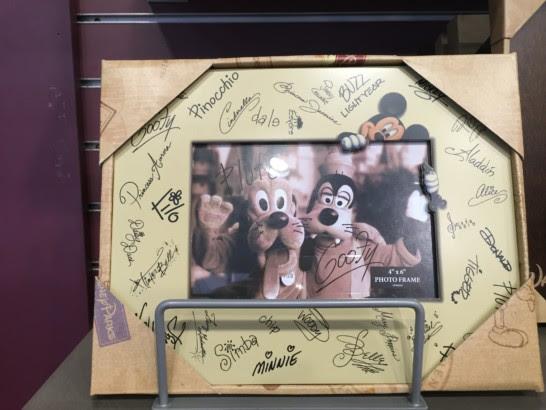 Picture Frame Souvenirs At Walt Disney World