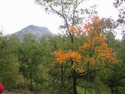 la  tardor a la muntanya