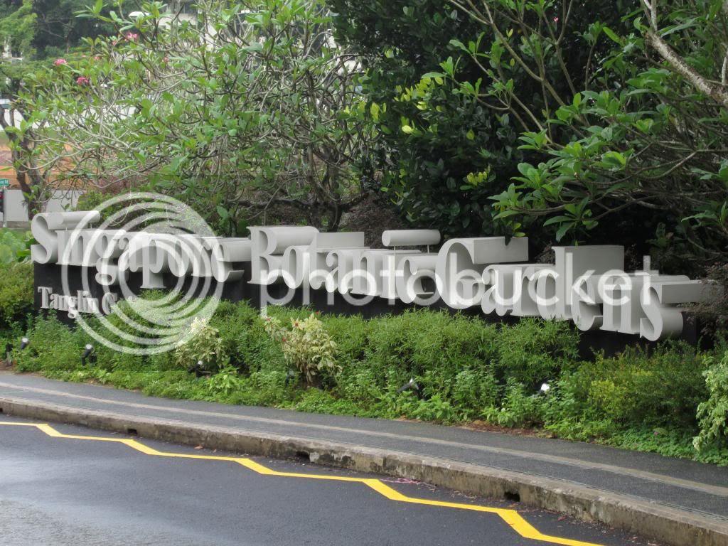 photo SingaporeBotanicGardensIssacDang08.jpg