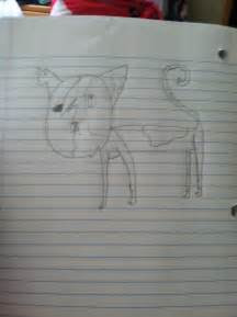 images  warrior cat drawings  pinterest