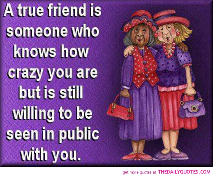 Quotes About Friendship Crazy 23 Quotes