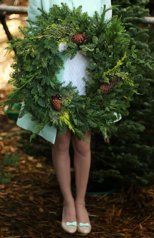 treefarm 141