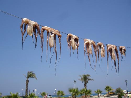 Greece 2010 012