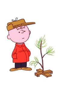 Charlie Brown Christmas Trees For Sale Theyre Not Such Bad Little