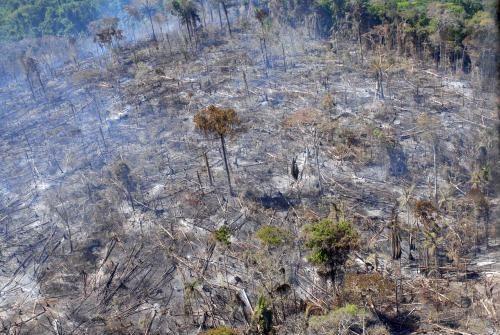 Imazon: Desmatamento e Degradação Florestal do Bioma Amazônia de 2000 a 2010