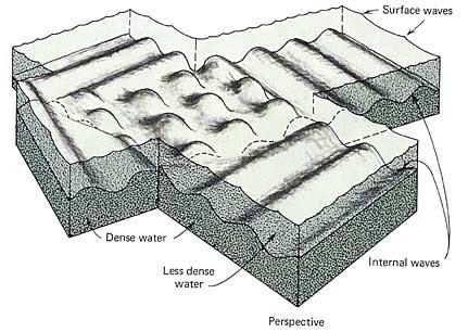 Gambar 16. Ombak dalam pada batas pertemuan dua lapisan air yang berbeda kepekatan. Satu lapisan pekat (di bawah) dan yang lainnya lebih encer (di atas). (Oceanography, Gross, hal. 204)