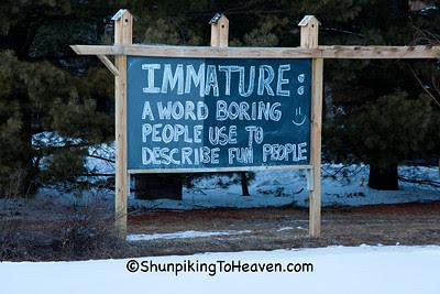 Message from a Roadside Philosopher, Iowa County, Wisconsin