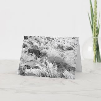 Field of Basalt card