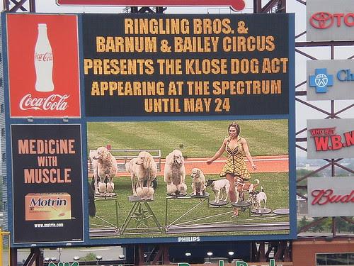 Dog Act