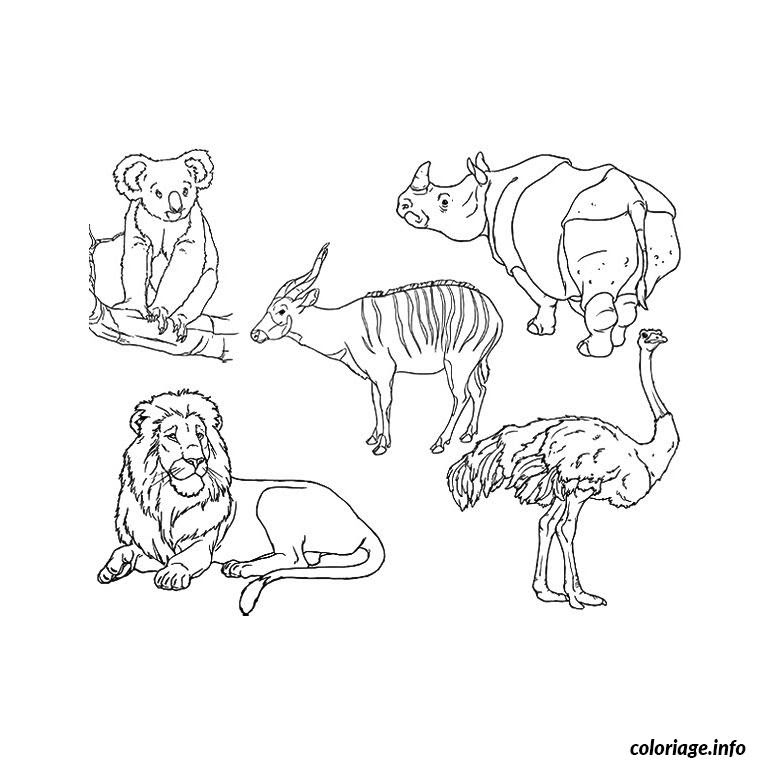 Coloriage Animaux Zoo Jecoloriecom