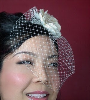 Beautiful Blusher Birdcage Veil