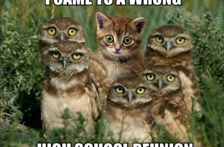 High School Reunion Funny Pictures Quotes Memes Funny Images