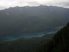 Packwood Lake From Snyder Mountain