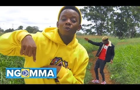 Download or Watch(Official Video) David wonder ft Mr seed – Za baba