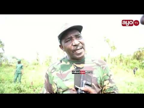 Ekari 20 Bangi Zateketezwa Kasulu mkoani Kigoma.