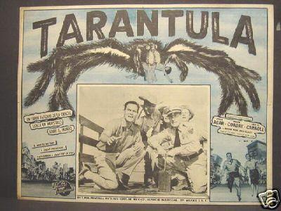 tarantula_mexlc