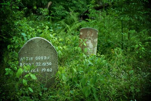 Graves 2