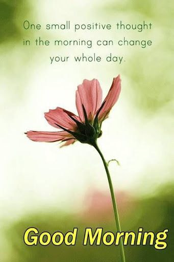 One Positive Thought In The Morning Pictures Photos And Images For