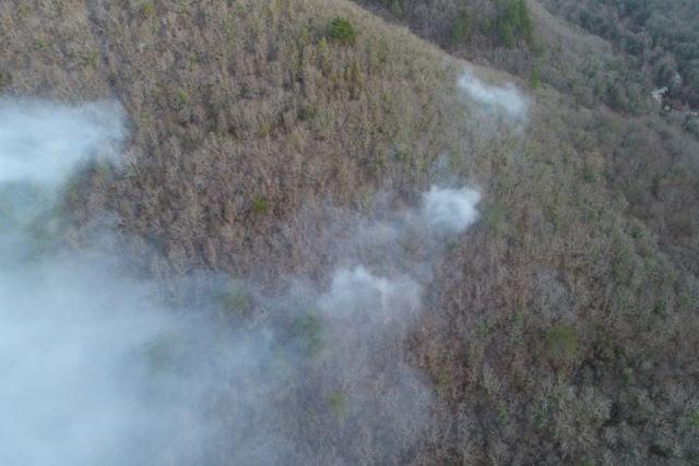В ДФО при тушении пожаров могут начать использовать беспилотники