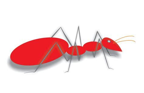 gambar semut cerita tentang semut