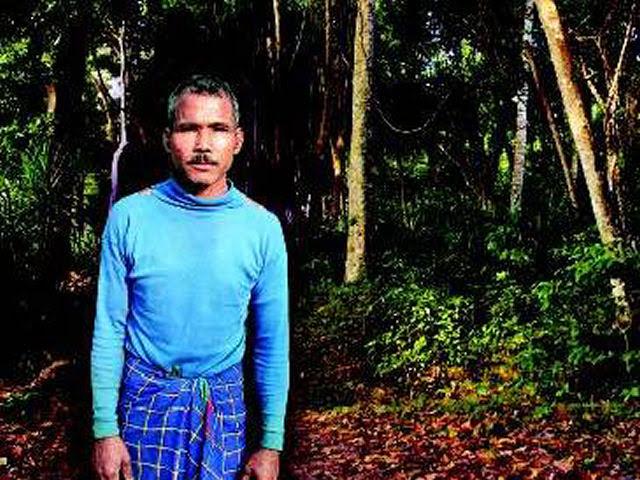 O herói que criou uma selva
