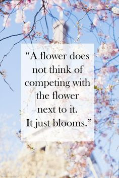You can bloom!