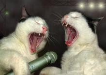 Співаки.